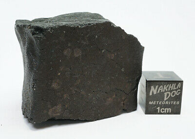 New Aguas Zarcas CM2 Meteorite - Smell the Hydrocarbons - 38.3 Grams