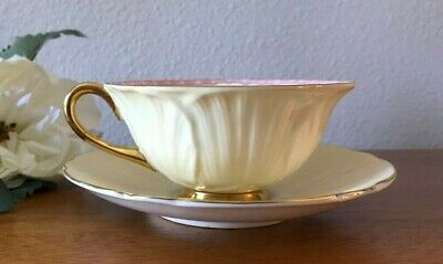 Shelley Oleander Teacup Cup & Saucer 13529 Yellow Floral Widemouth Gold Footed