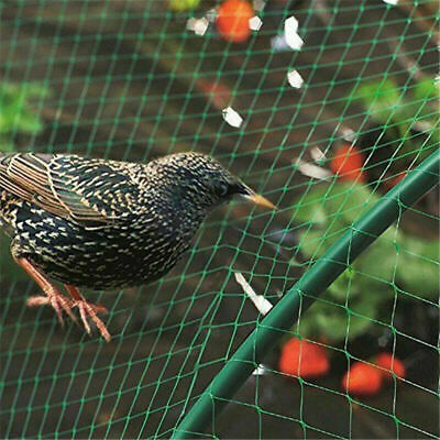 4 X 12M Anti Bird Plant Pond Green Nylon Garden Veg Fruit Netting Net Protection