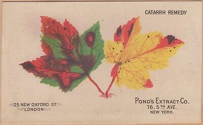Victorian Trade Card-Pond's Extract-New York-Patent Medicine-Colorful Leaves
