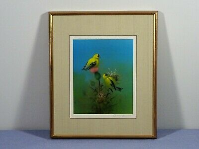 Owen Gromme,  Goldfinch In Bull Thistle, Signed Print