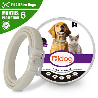 Flea and Tick Collar for Large Dogs Cat Over 18lbs Kills Fleas Prevents 6 Months