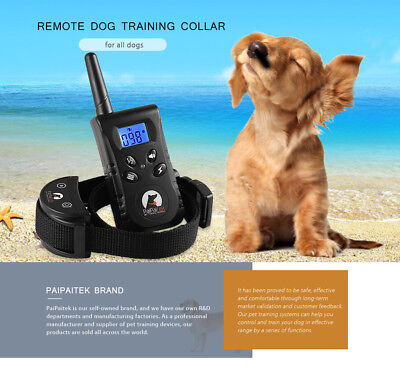 PaiPaitek PD520 Adjustable Rechargeable Remote Control Dog Training Shock Collar