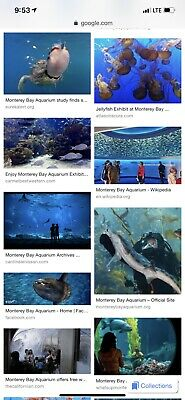 Monterey Bay Aquarium Pass Ticket