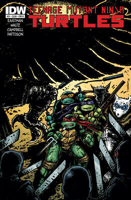 Teenage Mutant Ninja Turtles #31 1St Print Idw 2011 Cover B Eastman