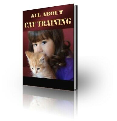 All About Cat Training Pdf ebook Free Shipping With master Resell  Rights