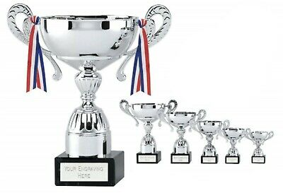 SILVER CUP AWARD Personalised Multi Purpose Sports Trophy, FREE DELIVERY 5 Sizes
