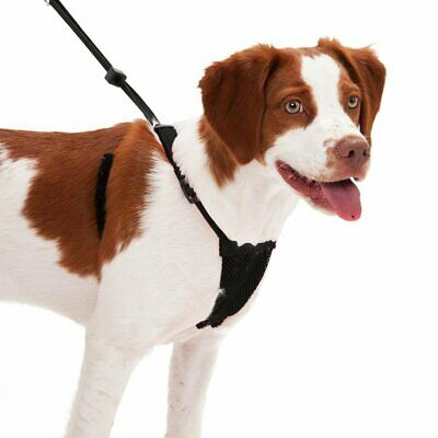 Sporn Dog Harness - No Pull and No Choke Humane Design, Non Pulling Pet...
