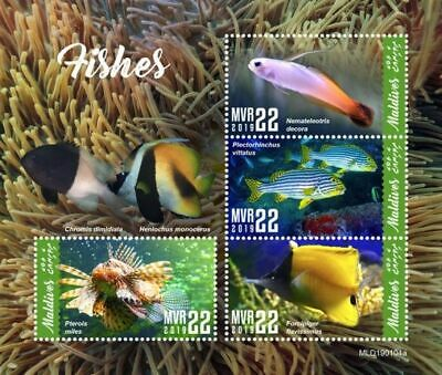 Z08 IMPERF MLD190104a MALDIVES 2019 Fishes MNH ** Postfrisch