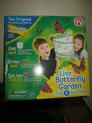 Insect Lore Live Butterfly Garden Grows 5 Butterflies By Mail Co. New In Box