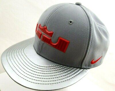 9e329a23 Nike True Fit LeBron James Flat Bill HAT Snapback Gray/SILVER SHINY Brim  Signed