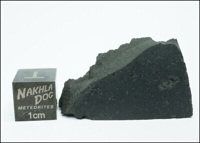 New Aguas Zarcas CM2 Meteorite - Smell the Hydrocarbons - 11.5 Grams