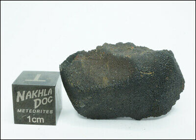 New Aguas Zarcas CM2 Meteorite - Smell the Hydrocarbons - 6.54 Grams