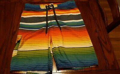 62346a7fb8 Hang Ten Mens Board Shorts Swim Trunks Multi Color Stripe Large Lined  Polyester