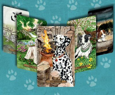 78pcs Tarot Cards Deck Magical Dog  English/Chinese Personal Board Game