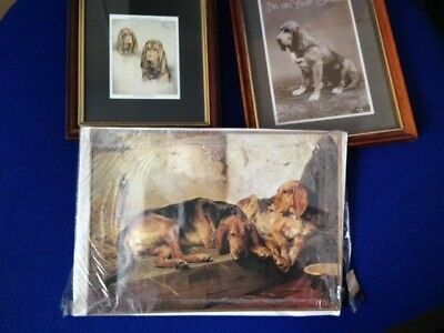 2 BLOODHOUND photos in frames + greetings card