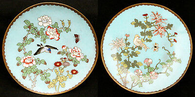 Antique Pair of Japanese Cloisonne Shippo Plates Bird Flowers Dove Charger Japan
