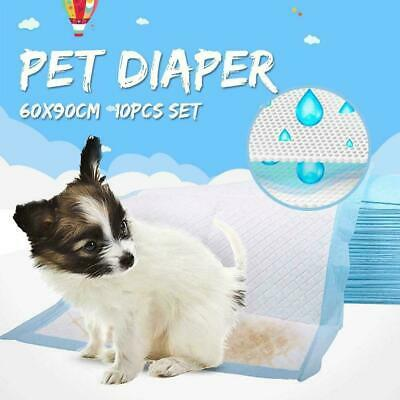 60x90cm Large Puppy Training Pads Toilet Pee Wee Mats Pet Dog Cat 2019-Vers Z7I9