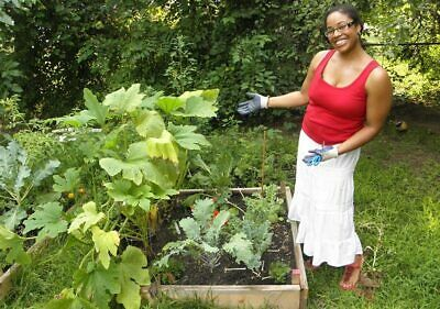Home Vegetable Gardening pdf ebook Free Shipping With Master Resell Rights