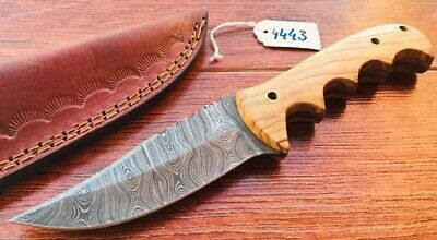 "9"" Custom Handmade Damascus Steel Hunting Skinning Knife Olive Wood Handle; 4443"