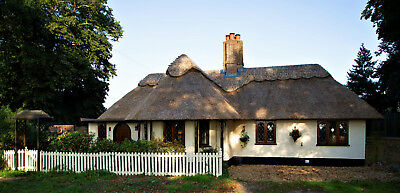 Lovely renovated Thatched Chocolate Box Cottage in Norfolk with cottage garden