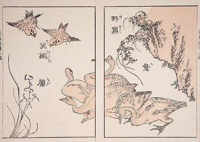 Antique Woodblock Print, Katsushika Taito, aka Dog Hokusai, Flowers, Birds e-hon