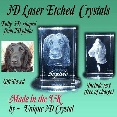 Personalised 3D laser etched crystal glass. gift, special occasions,Ornaments