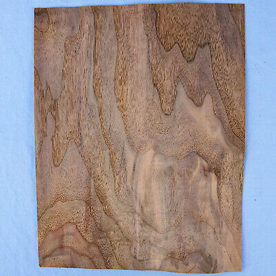 "Wild Grain Walnut Veneer - 2 Bookmatched Sheets - 9.25"" x 12"" - no backing"