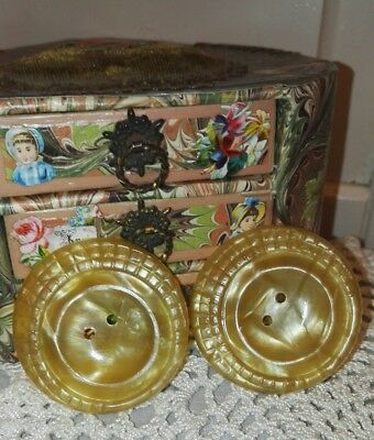 Set Of 2 Huge Celluloid Antique Buttons 1920s 👗 W@W