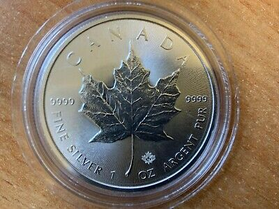 2019 Canadian Maple Leaf 1 Oz Silver Bullion Coin Unc Comes In A Capsule
