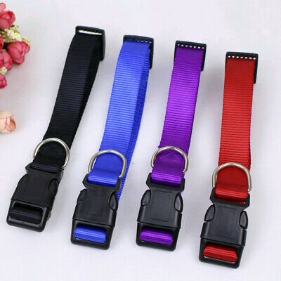 Small Pet Dog New 2019 Charming Puppy 4 Sizes S-XL Nylon Solid Collar Necklace