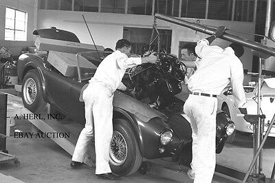 AC Cobra - Shelby Cobra –1964 production in Venice CA. USA -AC Cobra / Shelby 4