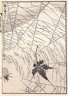 Authentic Hokusai Edo 1st Edition Woodblock Print from One Hundred Views of Fuji