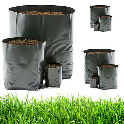 100 pcs| 0.22 gal |Nursery Pots Plant Grow Bags Seedling Container Seed Seedling