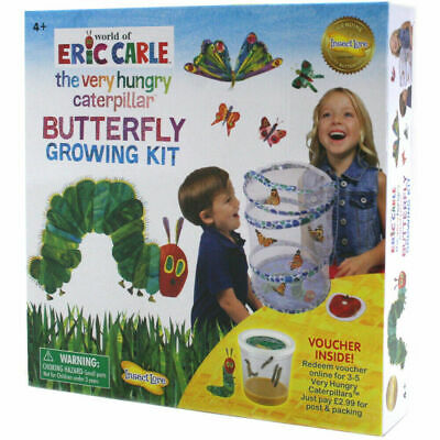 The Very Hungry Caterpillar Butterfly Growing Kit Grow Your Own Insectlore