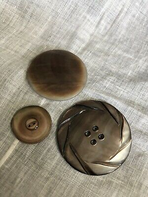 Vintage 3 Beautiful Abalone Shell Buttons 29-25