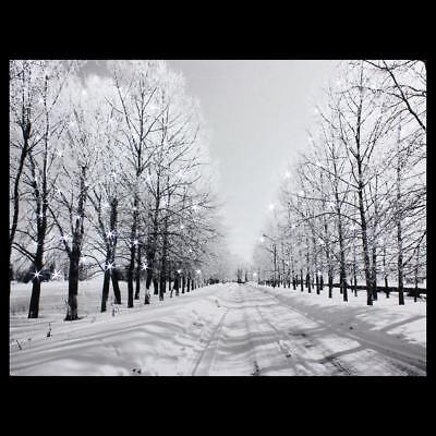 LED Luminous Snow Road Tree Lighted Canvas Print Art Painting Home Wall