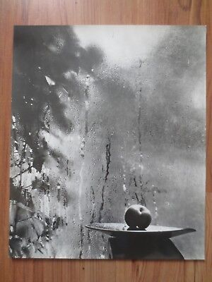 Josef Sudek - Window -1952/1958 - silver gelatin photos -very nice condition