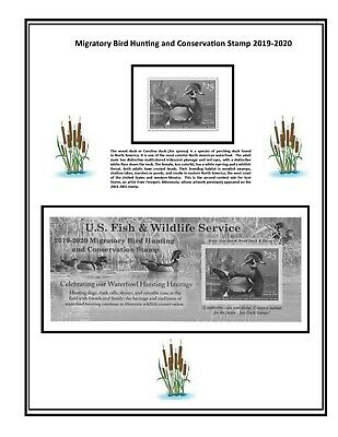 RW86 2019 U.S. Federal Duck Stamp Supplement Album Page Similar to White Ace