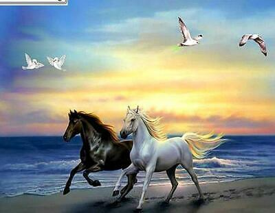 """5D Full Drill Square Diamond Embroidery Cross Stitch """"Run the horse on the be..."""