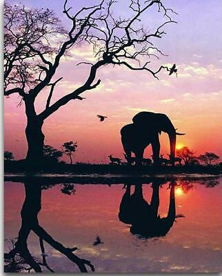 """5D DIY Diamond Full square Embroidery """"Sunset landscape with elephant"""""""
