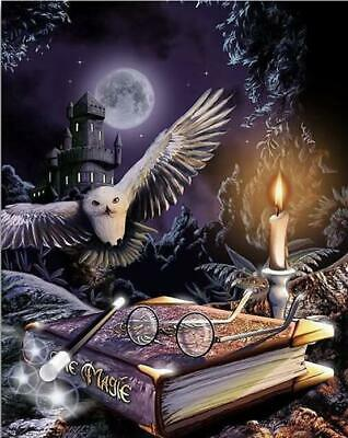 """5D DIY Diamond Full round Embroidery """"Harry Potter - Magic book and owl"""""""