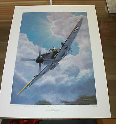 Don Connolly Unpassioned Beauty Aviation Art Spitfire