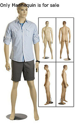 Male Mannequin Fiberglass with Blonde Hair