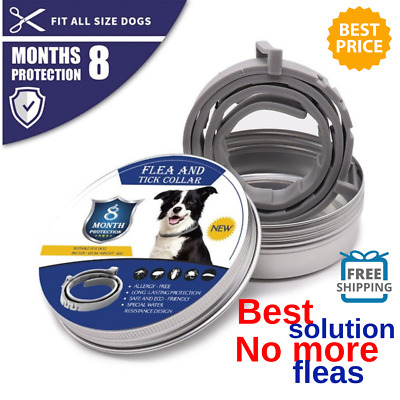DEWEL™ Flea and Tick Collar for All Size Dogs -8 MONTH PROTCTION HOT NEW Perfect