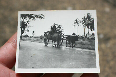 Vintage Oriental Asian Chinese Small Photograph #8