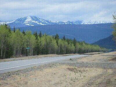 5 Acres Tok, Alaska, Easy Access, No Taxes, Good Roads, Close To Town, Options!