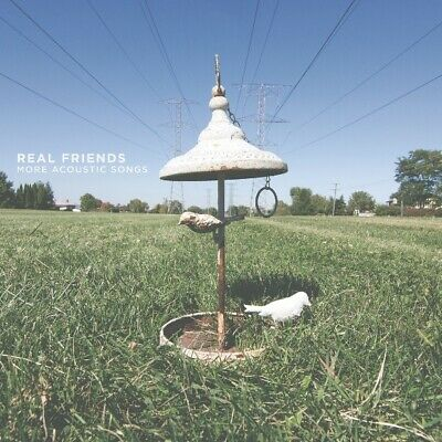 Real Friends More Acoustic Songs RSD limited vinyl LP picture disc NEW/SEALED