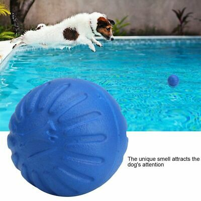 Pet Dog Puppy Training Dental Toy EVA Ball Chew Floating Interactive Toys 1pc