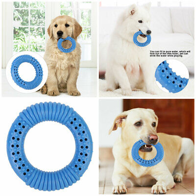 Dog Teether Ring Toy TPR Chew Teething Drinking Freeze Cooling Toys Water Feeder